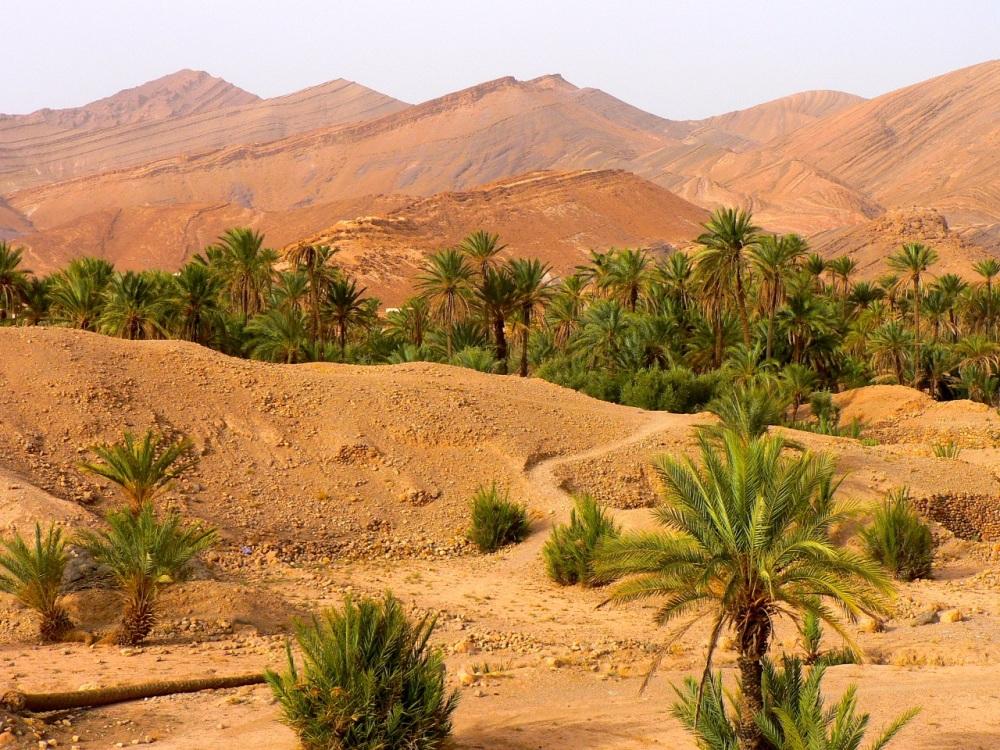 Maroc04