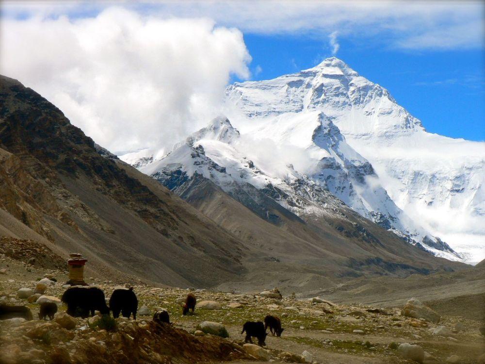 Everest, le toit du monde, côté Tibétain.