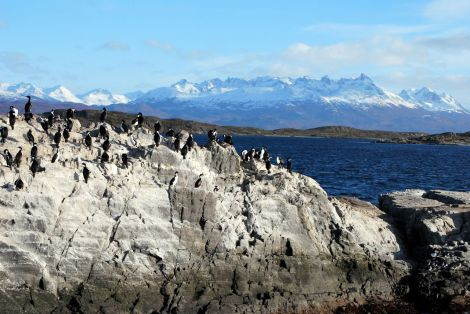 Le Canal Beagle, entre Ushuaia et Puerto Williams