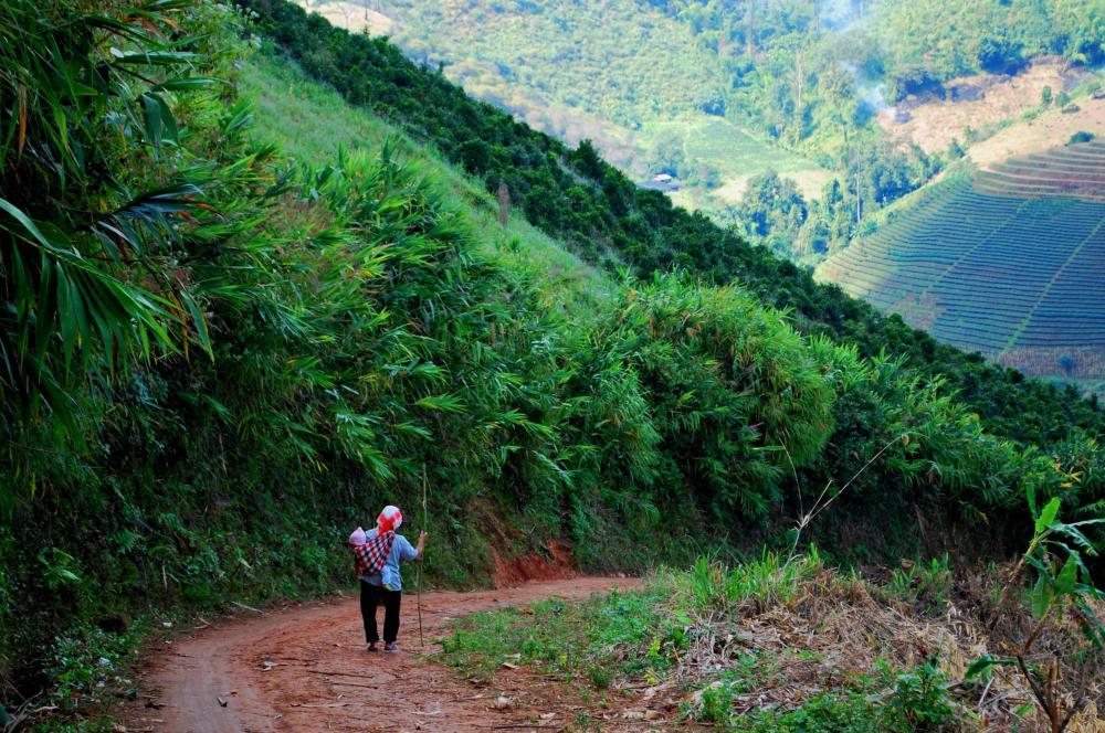 Thailande Mae Saleng 05