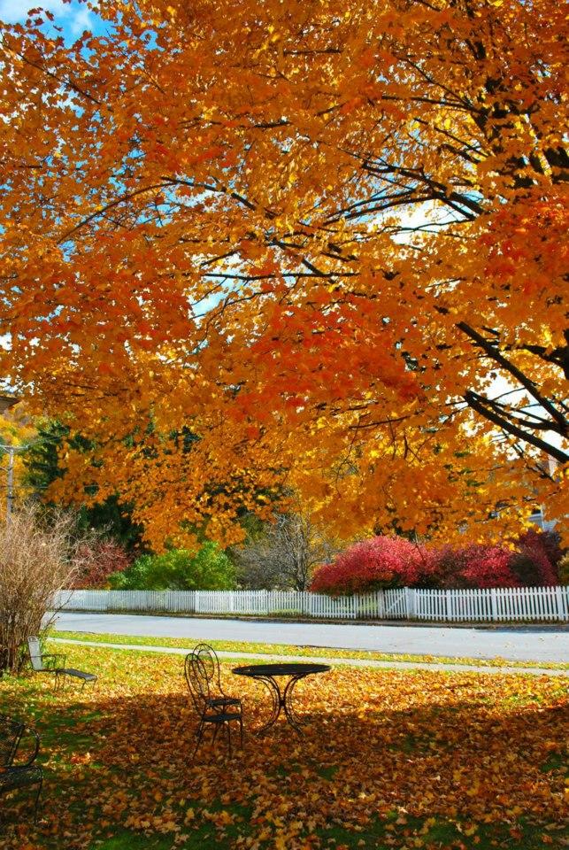 Vermont couleurs